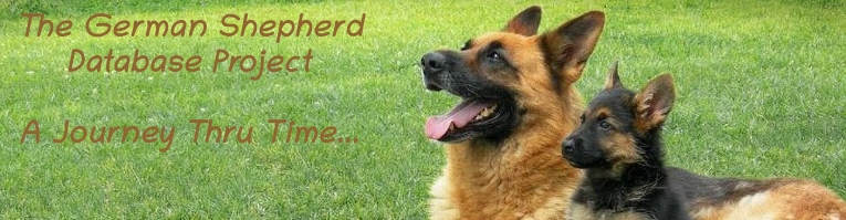 German Shepherd Database Project